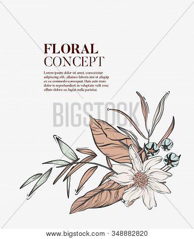 Wild Flowers Romantic Bouquet, Elegant Romantic Botanical Concept. Garden Floral Bloom With Outline