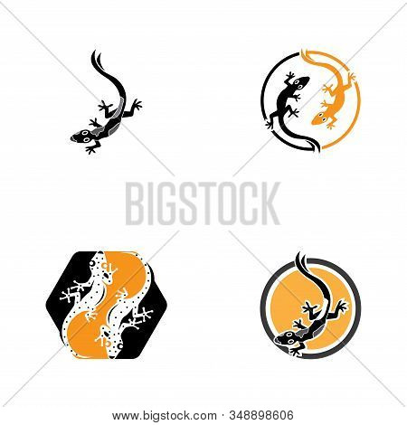 Lizard Chameleon Gecko Animall Logo And Symbol Vector Illustration