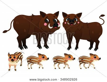 Cute Cartoon Boar Family Vector Image. Boars Or Hogs Mom And Dad With Young Boars. Forest Animals Fo