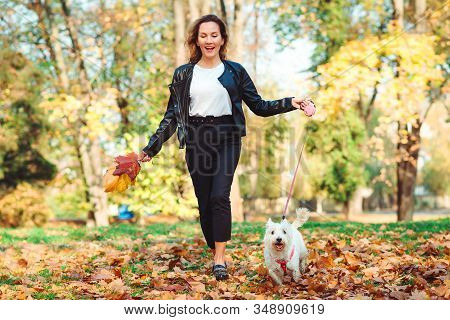 Happy Woman Running With Her Little West Highland White Terrier In A Park. Stylish Girl With Dog On