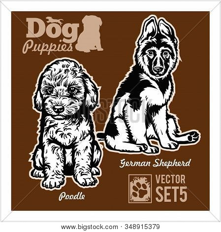 Poodle And German Shepherd - Dog Puppies. Vector Set. Funny Dogs Puppy Pet Characters Different Brea