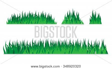 Vector Green Grass. Grass Leaves Vector Icon. Set Green Grass, Field, Nature, Eco Background. Vector