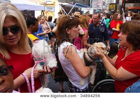 Adoptable Pups work the Crowd