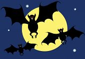 Bats on a background of the moon. Vector illustration. poster