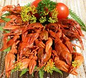 this is a freshly cooked crayfish with dill poster