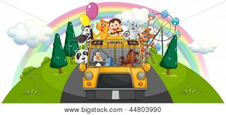 Illustration of a yellow zoo bus at the road on a white background