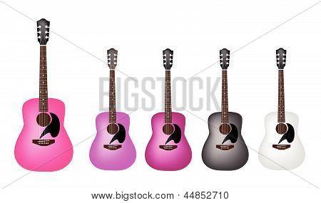 Set of Beautiful Acoustic Guitars on White Background