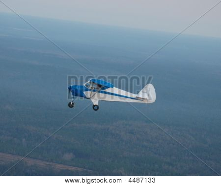 Piper Colt With Blue Wingtips