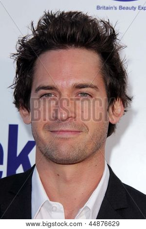 LOS ANGELES - APR 23:  Will Kemp arrives at the 7th Annual BritWeek Festival