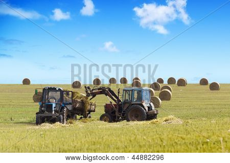 Farmers harvesting hay by tractores in unny day. poster
