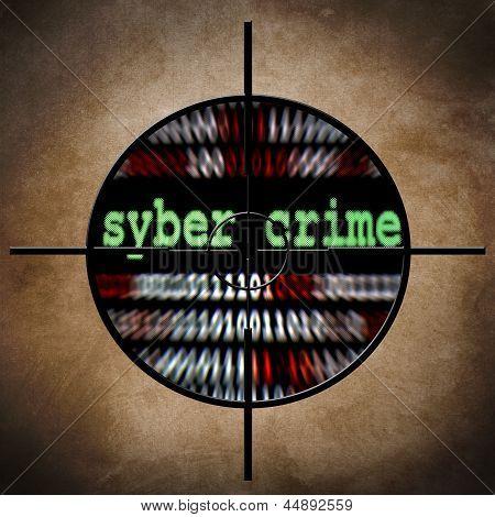 Syber Crime Target