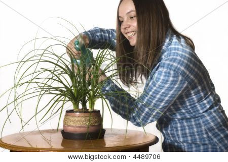 Woman Spraing The Plant