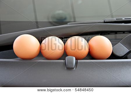 Eggs Are Placed In Front Of Car.