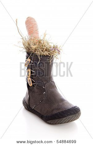 Boot With Carrot And Straw For Sinterklaas