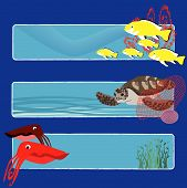 three tropical fish banners no text indicate sea world creatures poster