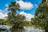 boat in the river in the peruvian Amazon jungle at Madre de Dios Peru poster