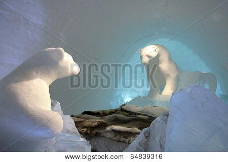 Sleeping with Polar Bears