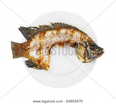 Nile Tilapia Fishbone