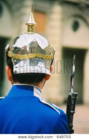 The Swedish Guardsman