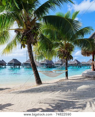 Hammock at beautiful beach on Moorea island in French Polynesia