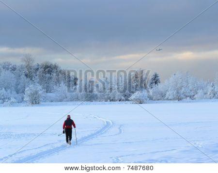 Cross-country Female Skier