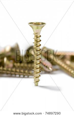 obstinacy, screw nail on white background