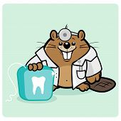 A beaver kid's dentist holding a dental floss. poster