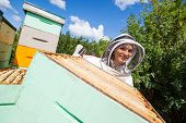 Portrait of female beekeeper in protective clothing working with colleague at apiary poster
