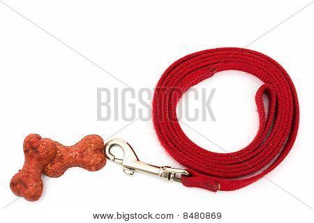 Dog Leash