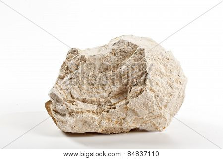 Piece Of Diatomite - Diatomadeous Earth