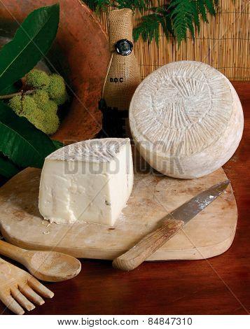 selection of italian cheese