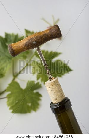 Wine Opener Closeup
