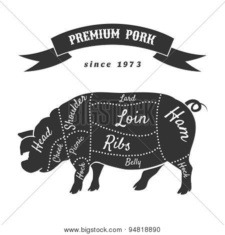 Vector cuts of pork or butcher scheme pig