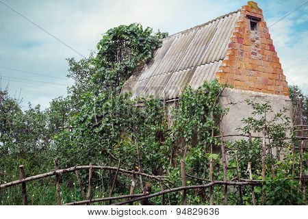 Abandoned house in neglected garden