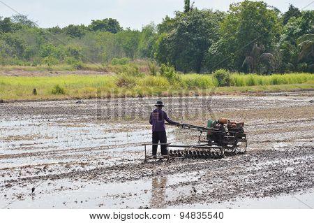 Thai farmer on pushcart in paddy field