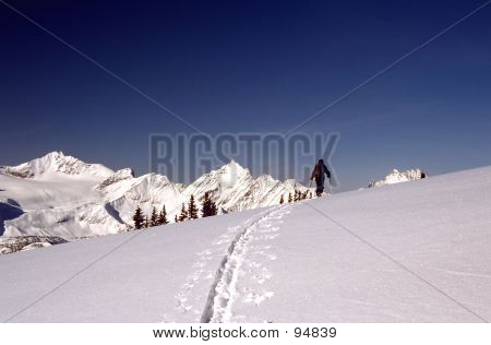 Backcountry Skier 2