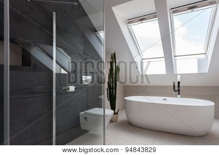 Shower cubicle and bathtub in elegant bathroom poster