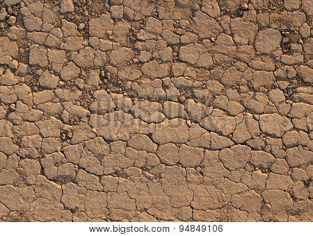 Desert Crust Soil