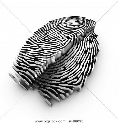 Cutting plane of a 3d fingerprint