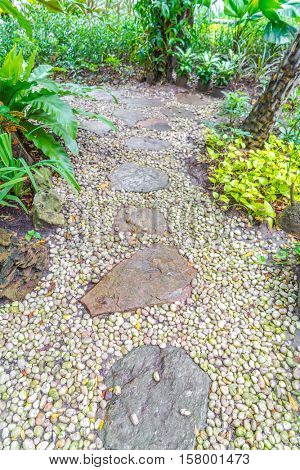 Flagstone walkway in garden