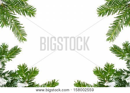 Christmas greeting card with frame formed by spruce tree branches