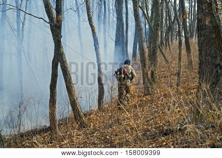 A suppression of forest fire. Early spring.