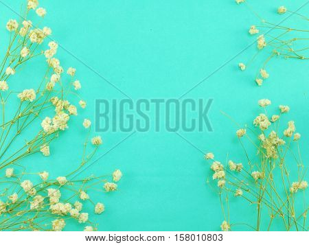 green space backgrond decorate with dried flower