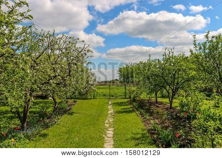 Stone path is leading through the garden to the gateway, behind which a green grassland is situated. The path is surrounded by the green trees, including apple trees and blossom flowers.