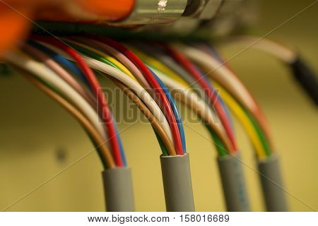 Four colourful cable bundles connected to the hub
