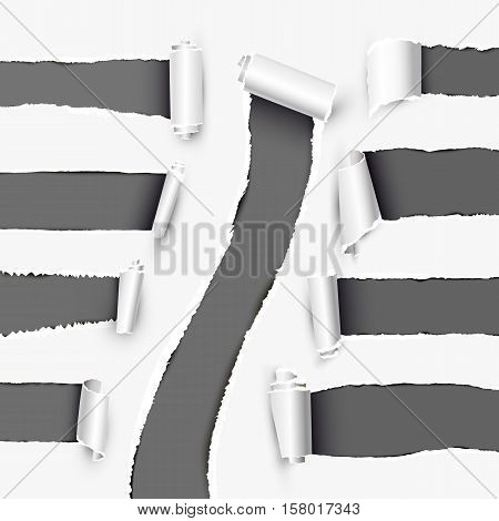 Realistic holes in white paper with scrolled sides. Torn off white background with ripped edges vector illustrations set. Torn page banner template. Holes in white paper layout. Various holes.
