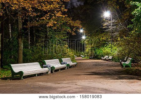 Night view of alley in the Kirov Central Culture and Leisure Park Saint Petersburg Russia
