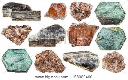 Set Of Various Mica (phlogopite) Minerals