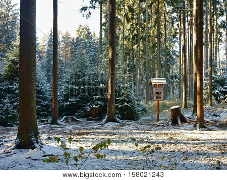 Information table on a nature trail in a snowy forest.