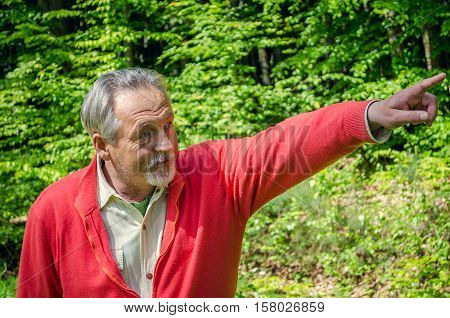 Portrait of a handsome senior man in bright sweater on the green trees background. Looking aside and point the finger on something behind the frame. Senior man with gray hair and beard.